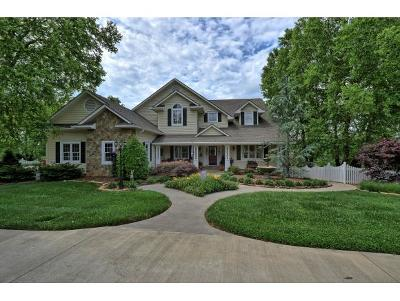 Jonesborough Single Family Home For Sale: 258 Lake Ridge Drive