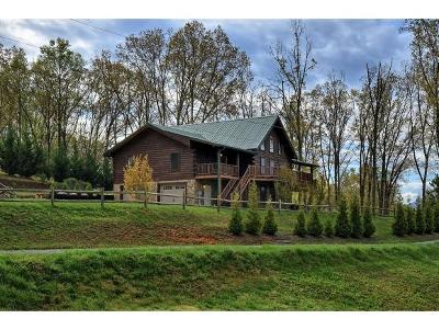 Elizabethton Single Family Home For Sale: 116 Zeb Grindstaff Road