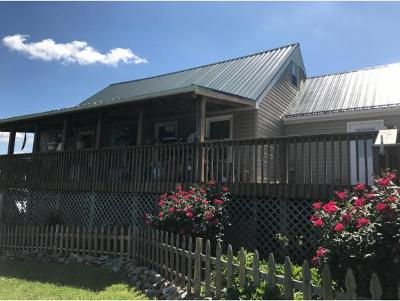 Bluff City Single Family Home For Sale: 3916 Hwy 390