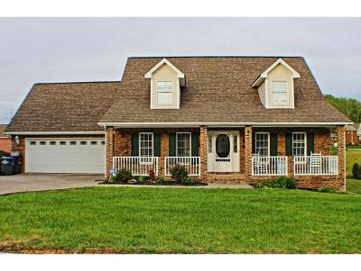 Kingsport Single Family Home For Sale: 3404 Bailey Ranch Rd