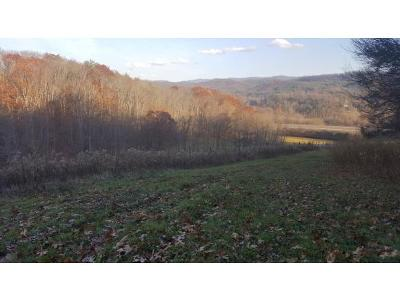 Unicoi Residential Lots & Land For Sale: TR 01 Powder Hollow Road