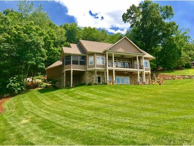 Gray Single Family Home For Sale: 134 McAfee Bluff