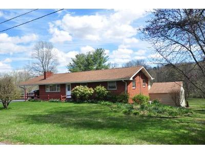 Johnson City Single Family Home For Sale: 2841 Woodhill Road
