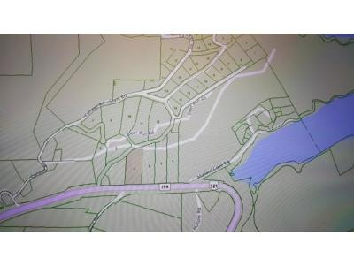 Butler Residential Lots & Land For Sale: TR1 Highway 321