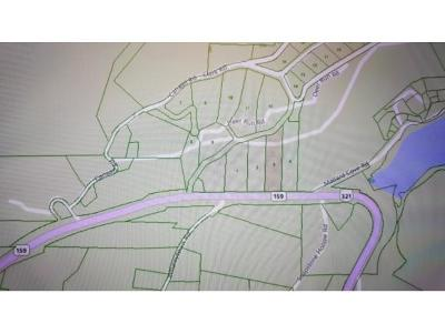 Butler Residential Lots & Land For Sale: TR 3 Highway 321