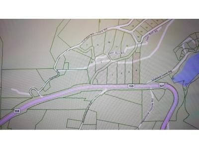 Butler Residential Lots & Land For Sale: TR 4 Highway 321