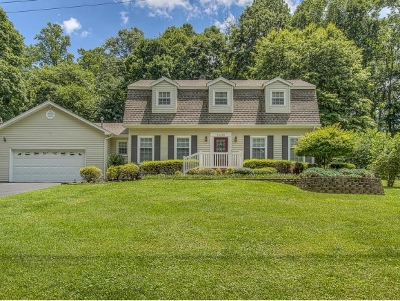 Damascus, Bristol, Bristol Va City Single Family Home For Sale: 14370 Heather Drive