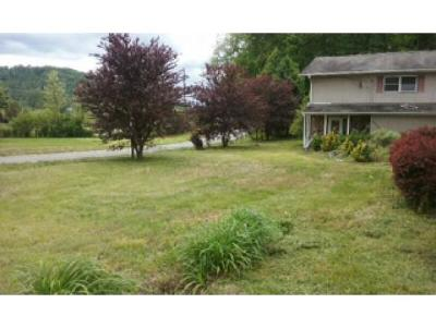 Single Family Home For Sale: 20244 Benhams Rd.