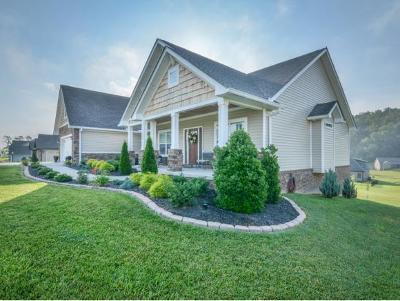 Johnson City Single Family Home For Sale: 690 Hales Chapel Road