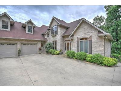 Bluff City Single Family Home For Sale: 379 Lakeshore Road