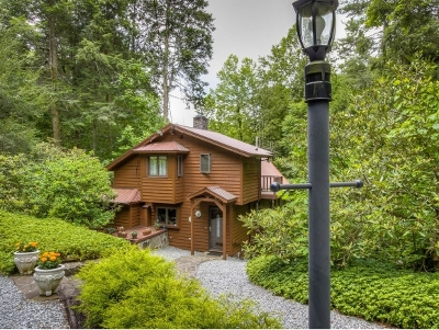 Roan Mountain Single Family Home For Sale: 133 Little Mountain Church Rd