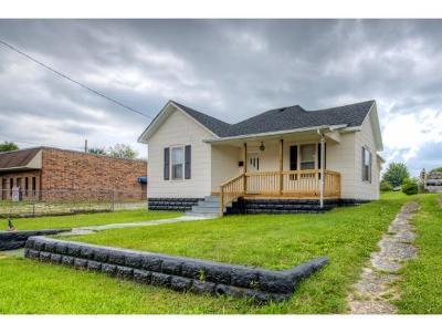Bristol VA Single Family Home For Sale: $74,900