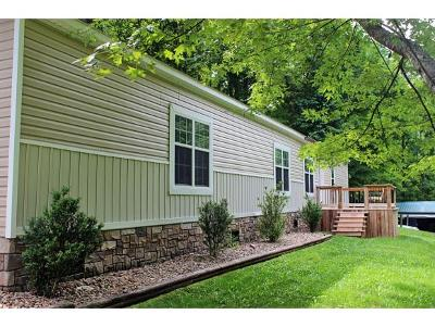 Unicoi Single Family Home For Sale: 120 Daddy Moore Road