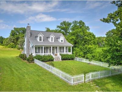 Greeneville Single Family Home For Sale: 520 Garrett Hill Road