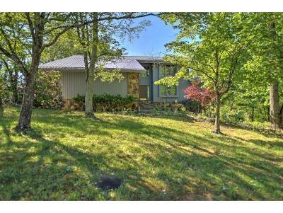Kingsport Single Family Home For Sale: 2071 Sharron Rd
