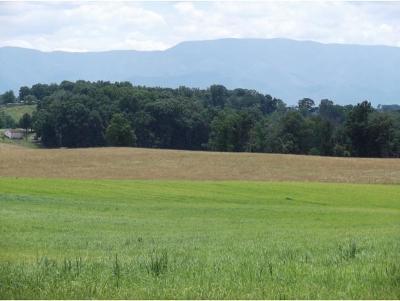 Greene County Residential Lots & Land For Sale: Cedar Creek Rd