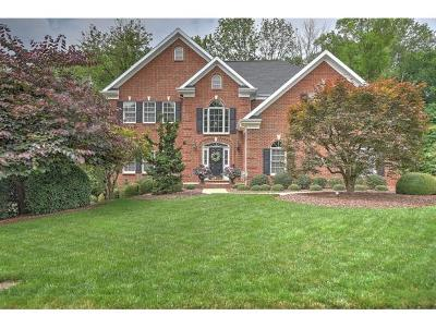 Kingsport Single Family Home For Sale: 1029 Sussex Drive