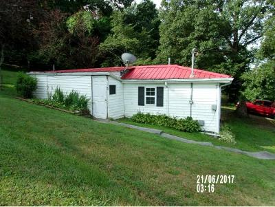 Piney Flats Single Family Home For Sale: 1031 Haw Ridge Rd