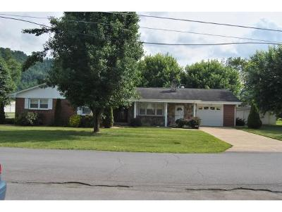 Elizabethton Single Family Home For Sale: 110 Midnight Dr