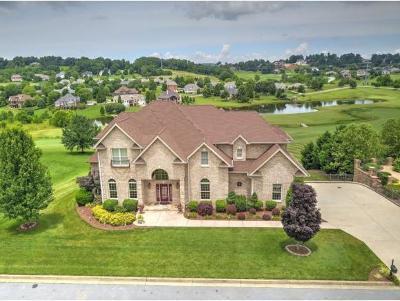 Jonesborough Single Family Home For Sale: 230 Lake Ridge Drive
