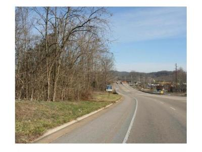 Johnson City Residential Lots & Land For Sale: TBD Bobby Hicks Pkwy/Hwy75