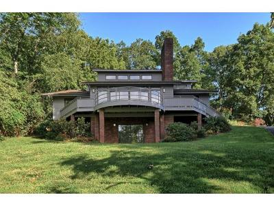 Johnson City Single Family Home For Sale: 3614 Honeywood Dr