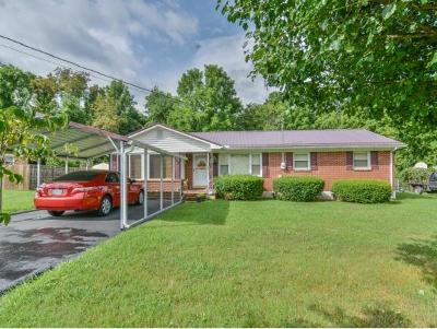 Erwin Single Family Home For Sale: 112 Meadowbrook Drive