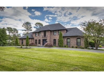 Bristol Single Family Home For Sale: 5904 Old Jonesboro Road