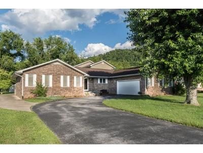 Elizabethton Single Family Home For Sale: 185 Mayfield Drive
