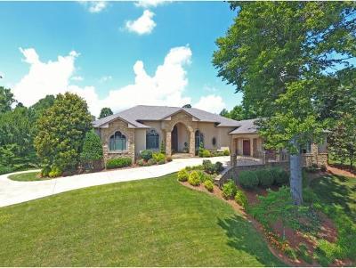 Jonesborough Single Family Home For Sale: 206 Hidden Forest Court