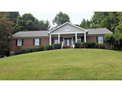 Bristol Single Family Home For Sale: 529 Meadow Drive