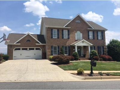 Johnson City Single Family Home For Sale: 206 Emerald Chase Circle