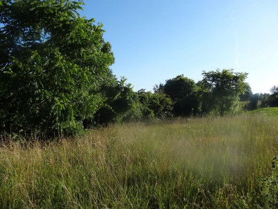 Johnson City Residential Lots & Land For Sale: 6623 Kingsport Hwy