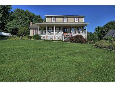 Johnson City Single Family Home For Sale: 131 Quail Ridge Rd