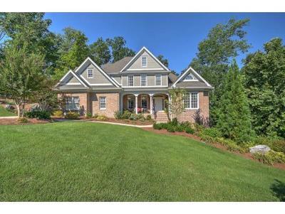 Kingsport Single Family Home For Sale: 4916 Preston Park Drive