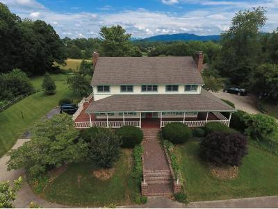 Johnson City, Kingsgport, Jonesborough, Kyles Ford, Watauga, Fall Branch Single Family Home For Sale: 519 Claude Simmons Rd