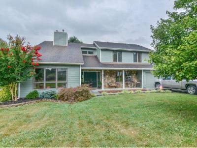 Johnson City Single Family Home For Sale: 3319 Bondwood Circle