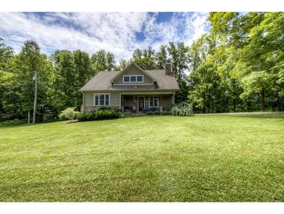bristol Single Family Home For Sale: 1391 Gas Well Rd