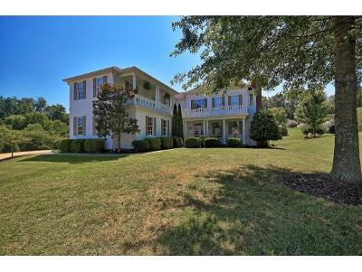 Jonesborough Single Family Home For Sale: 4 N Wild Cherry Court