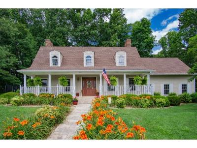 Bristol Single Family Home For Sale: 133 Millwood Road