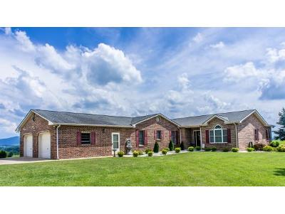 Greeneville Single Family Home For Sale: 649 Pigeon Creek Road
