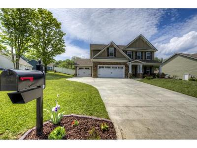 Gray Single Family Home For Sale: 139 Settlers Way