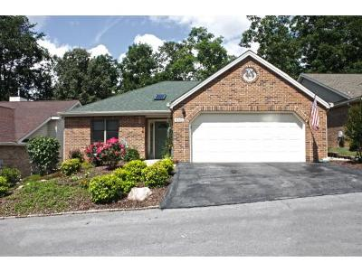 Kingsport Single Family Home For Sale: 510 Willowbrook Trace