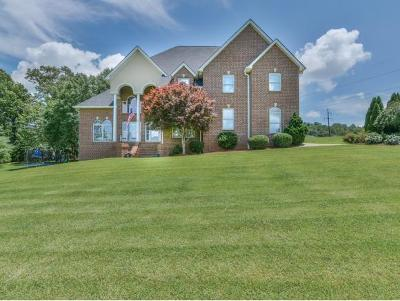 Johnson City Single Family Home For Sale: 778 Carroll Creek Rd.