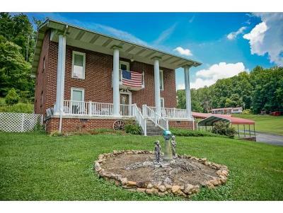 Elizabethton Single Family Home For Sale: 153 Marion Branch