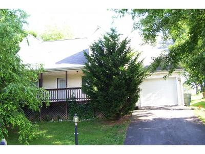 Abingdon Single Family Home For Sale: 249 Hallock Drive