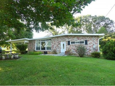 Gray Single Family Home For Sale: 157 Snyder Rd.