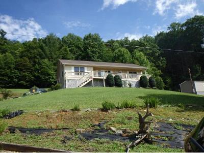 Roan Mountain Single Family Home For Sale: 136 Hubert Shell Rd