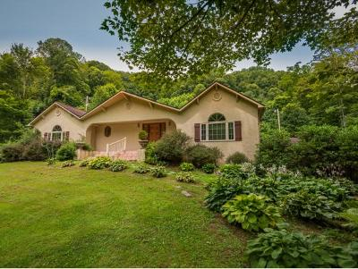 Flag Pond Single Family Home For Sale: 2012 Rice Creek Rd