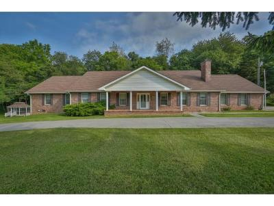 Piney Flats Single Family Home For Sale: 2160 Enterprise Rd
